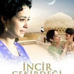 Des vies sans valeur (İncir Çekirdeği) de Selda Çiçek (2009)